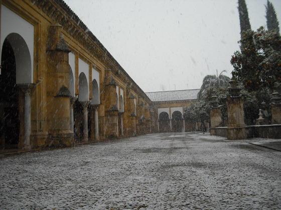 nevada-en-el-patio-de-los-naranjos